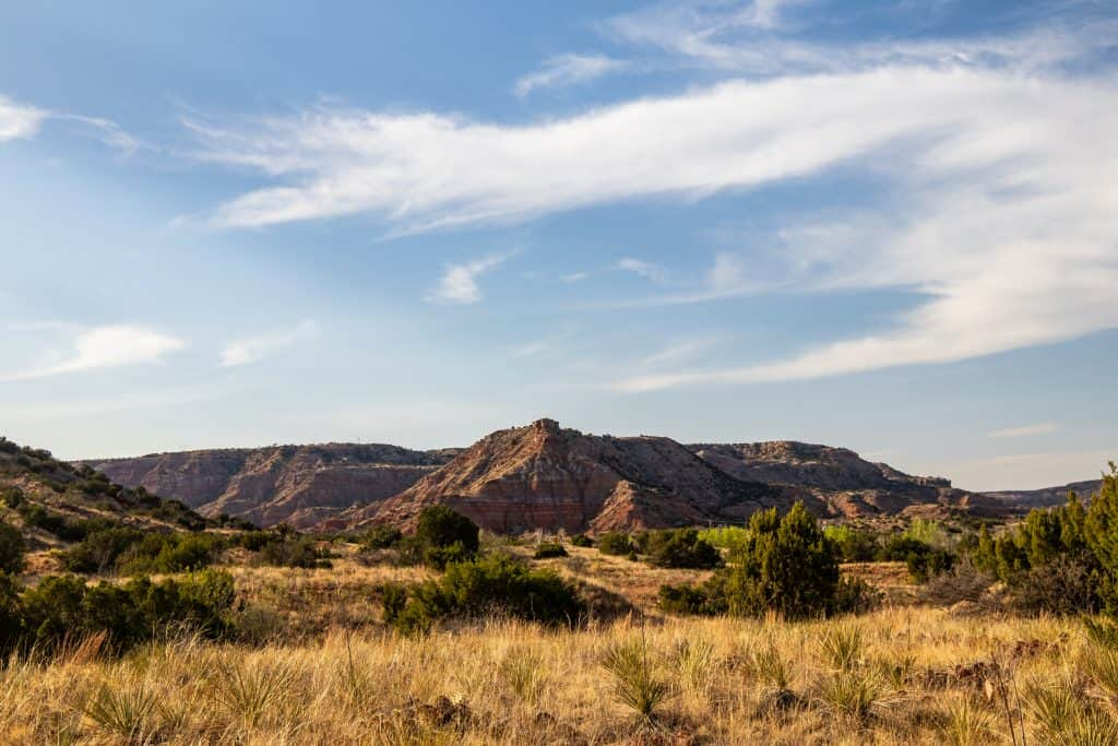 An overlook on Palo Duro Canyon