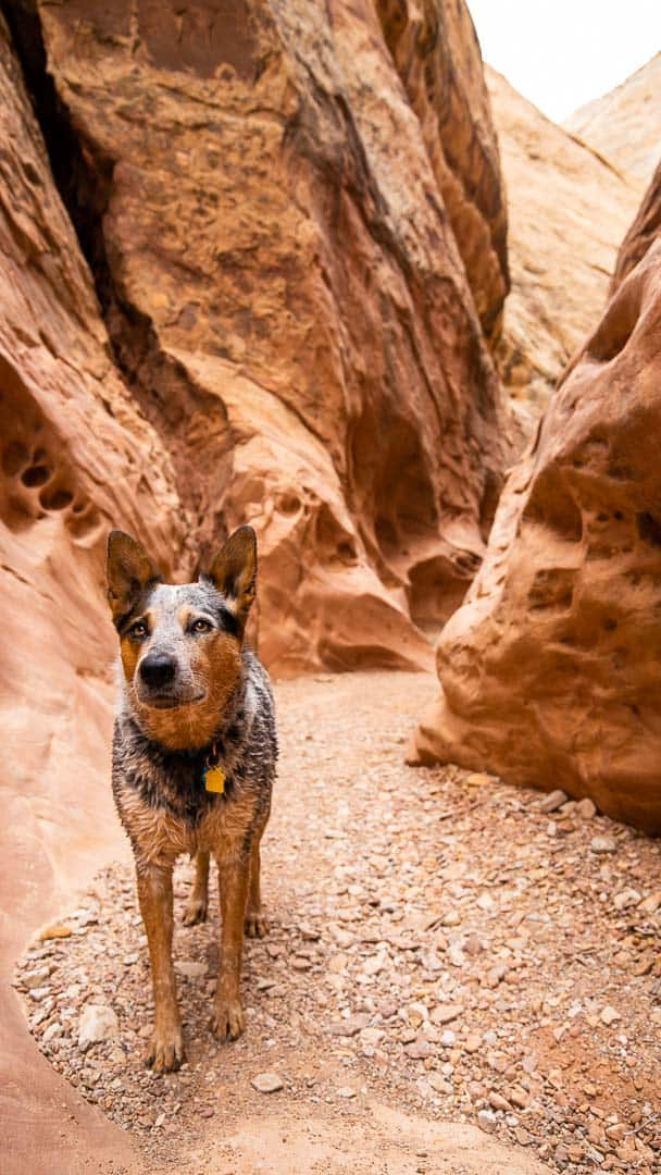 Everest in Little Wild Horse Slot Canyon