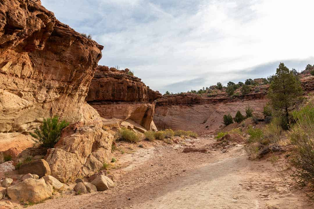 Following the wide path toward the entrance to Zebra Slot Canyon