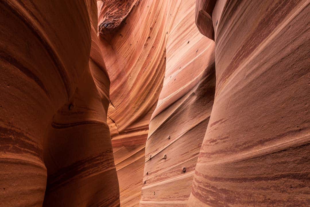 Image of the inside of Zebra Slot Canyon, Escalante